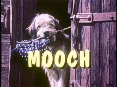 mooch_000