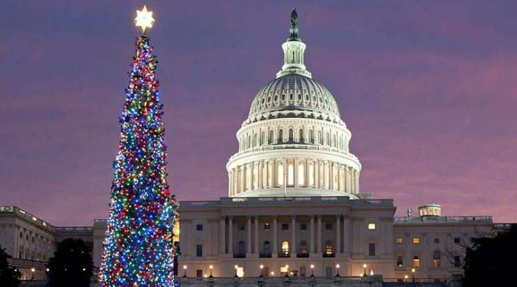 Capitol-Tree-810x450