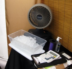 fan-ice-300x287