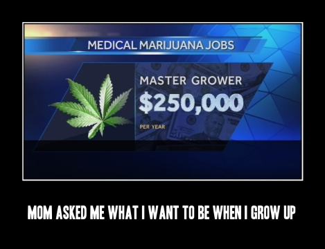 screw_being_a_policeman_or_a_fireman._i_want_to_be_a_master_medical_marijuana_grower._1354427491