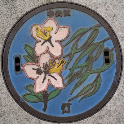 http://www.japanvisitor.com/japanese-culture/manhole-covers
