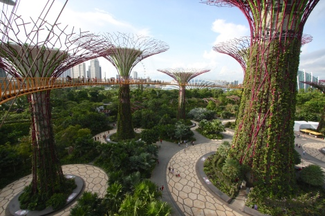 OCBC_Skyway,_Gardens_By_The_Bay,_Singapore_-_20140809