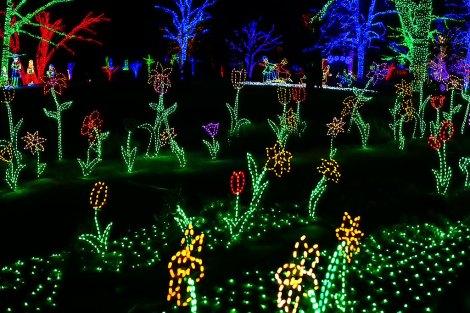 Image result for winter walk of lights